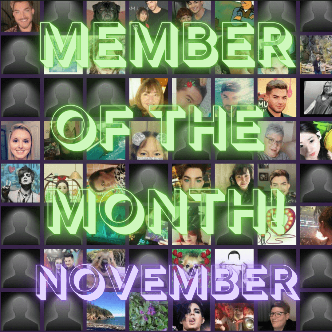 News article image Member of the Month - November