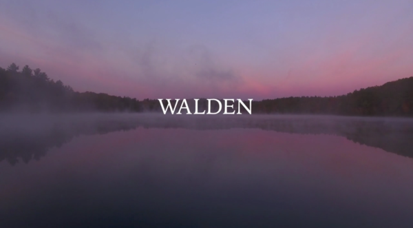 "Don Henley to Host ""Walden"" Documentary Screening in Boston Nov 8th"