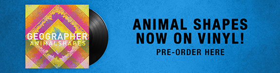 Pre Order Animal Shapes Vinyl
