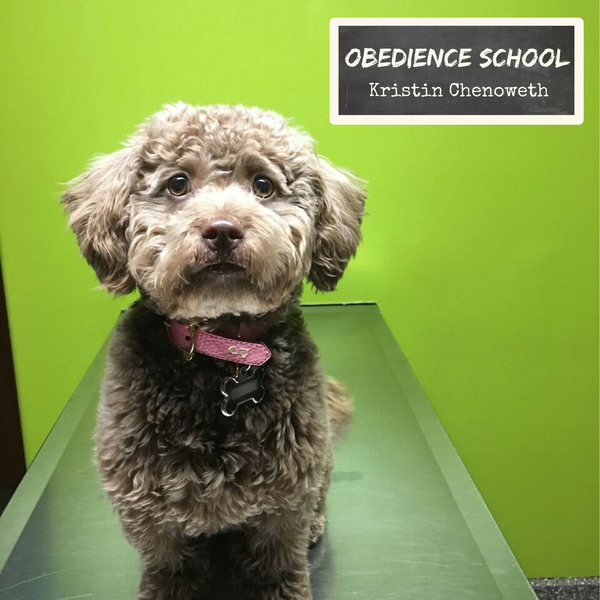 "New Song, ""Obedience School,"" is Dedicated to the ASPCA & Available Now!"