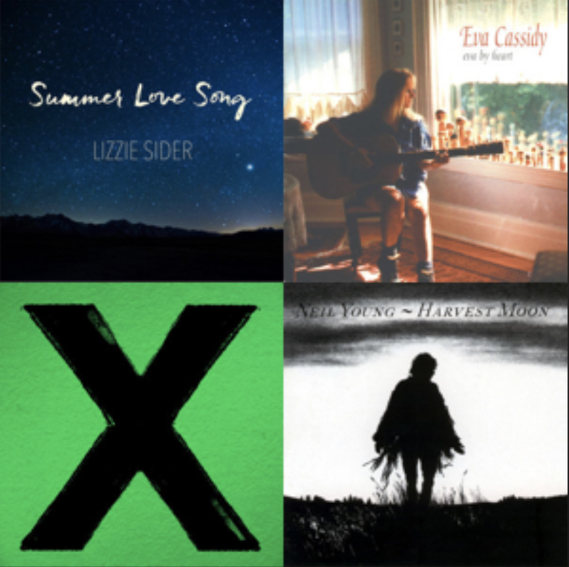 Lizzie's Summer Love Song playlist on Spotify!
