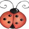 LadybugKris avatar