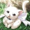 sydney_kittie avatar
