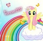 forever2997 avatar